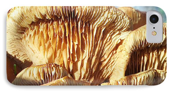 Mushrooms By Jan Marvin IPhone Case
