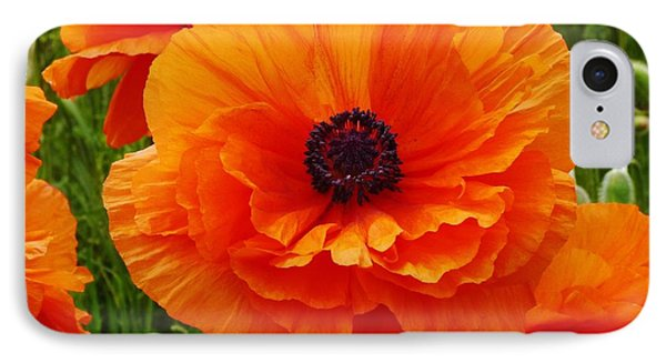 My Bright And Shining Poppy IPhone Case