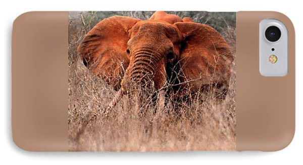 My Elephant In Africa IPhone Case