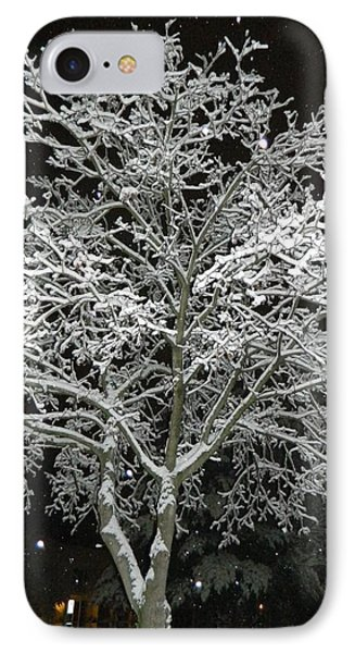Mystical Winter Beauty IPhone Case