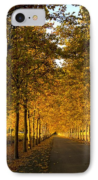 Napa Valley Fall IPhone Case