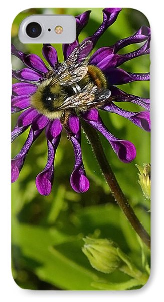 Nature At Work IPhone Case