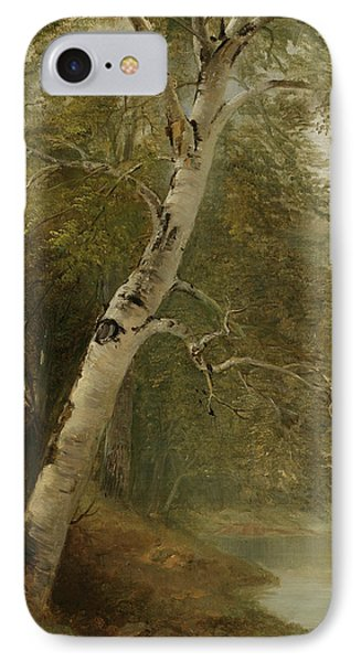 Nature Study   A Birch Tree IPhone Case