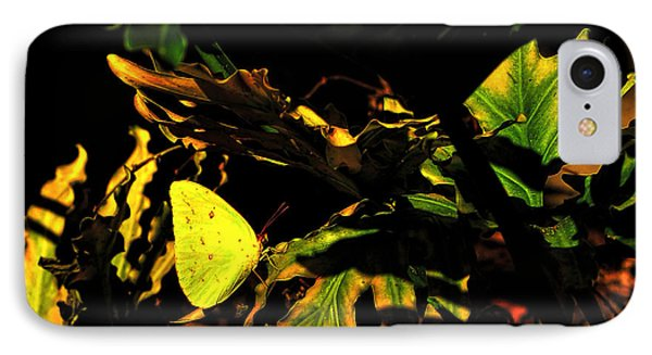 Nature's Colors IPhone Case