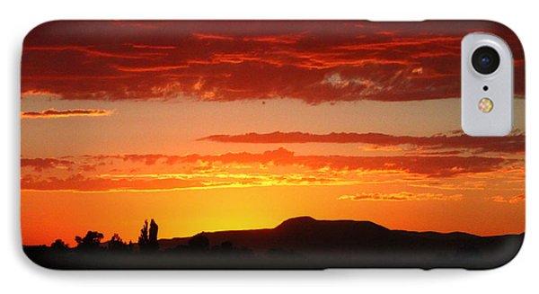 Natures Orange Paint IPhone Case