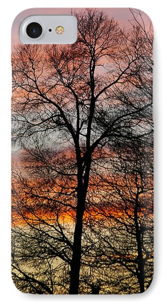 New Years Sunset IPhone Case
