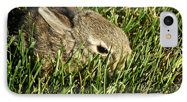 The Baby Cottontail IPhone Case