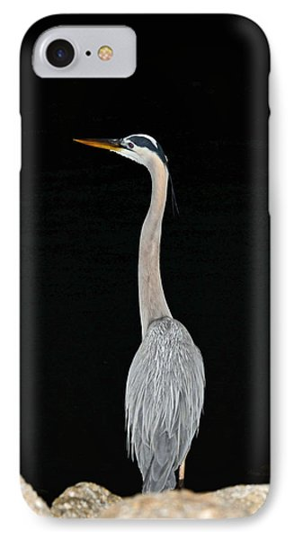 Night Of The Blue Heron 3 IPhone Case