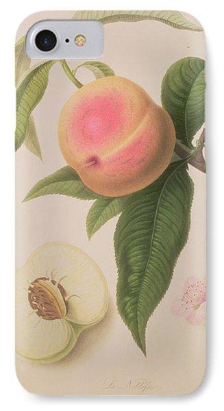 Noblesse Peach IPhone Case