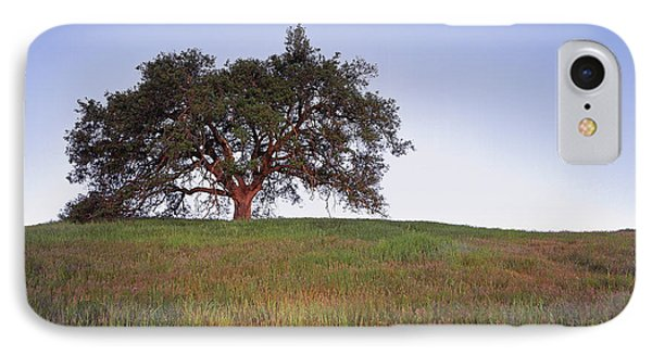 Oak Tree Glow IPhone Case