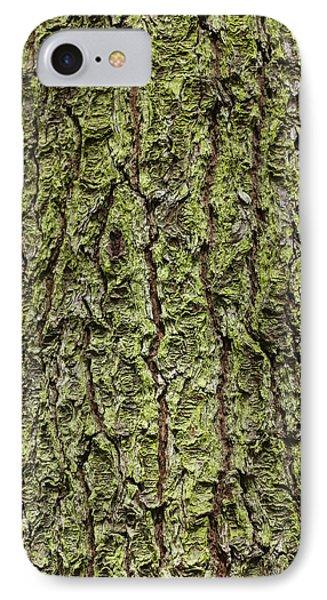 Oak With Lichen IPhone Case