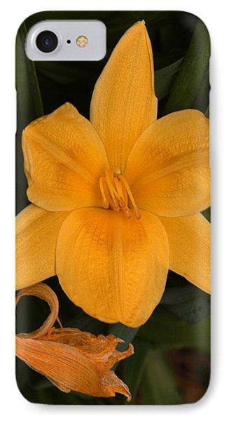 Ocean Beach Yellow Flower IPhone Case