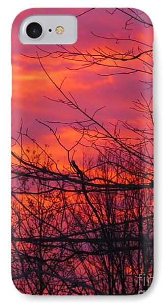 Oh What A Beautiful Morning IPhone Case