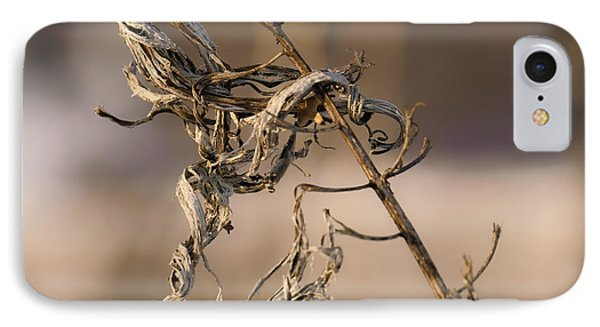 old beauty  Leif Sohlman IPhone Case