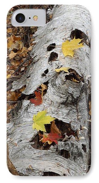 Old Fallen Birch IPhone Case