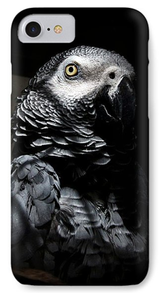 Old Gray IPhone Case