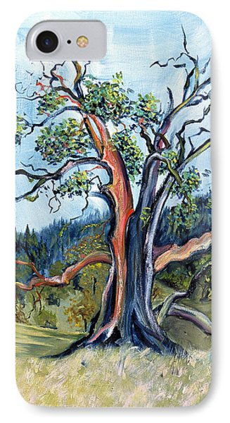 Old Madrone Tree In November  IPhone Case