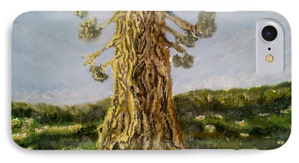 Old Tree In Spring Light IPhone Case