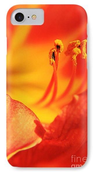 Orange Blooming IPhone Case