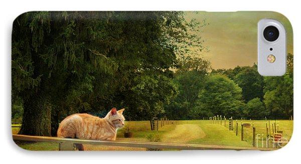 Orange Farm Cat IPhone Case