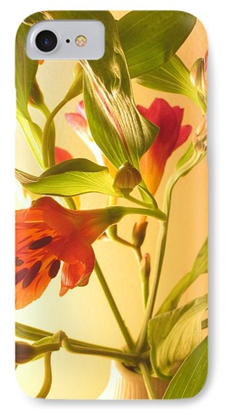 Orange Fresias IPhone Case