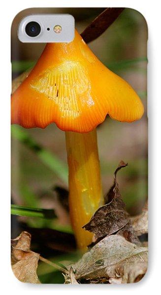 Orange Fungi IPhone Case