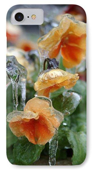 Orange Iced Pansies IPhone Case