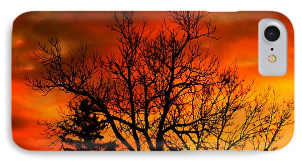 Orange Morning IPhone Case