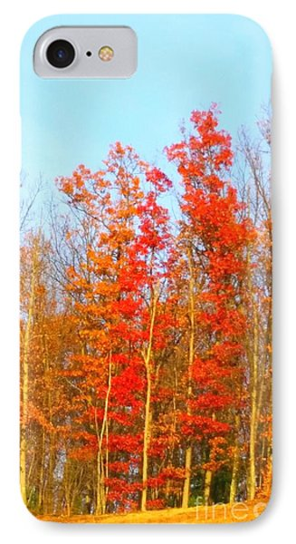 Orange Trees.  IPhone Case