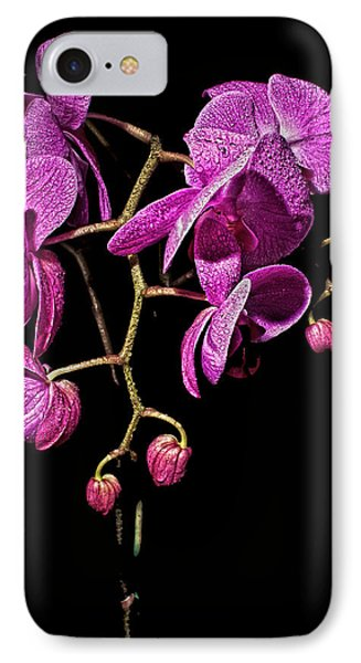 Orchid Dew IPhone Case