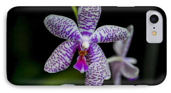 Orchid #3 IPhone Case