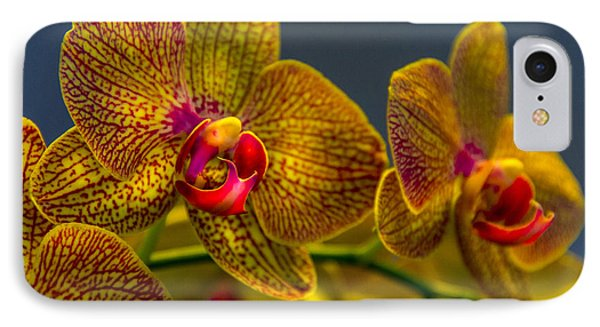 Orchid iPhone 8 Case - Orchid Color by Marvin Spates