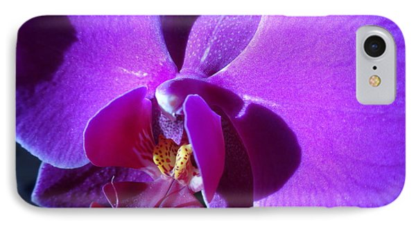 Orchid From My Valentine IPhone Case