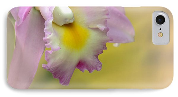 Orchid Whisper IPhone Case