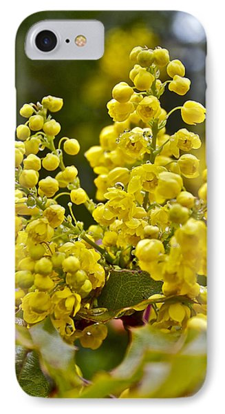 Oregon Grape Blossoms IPhone Case