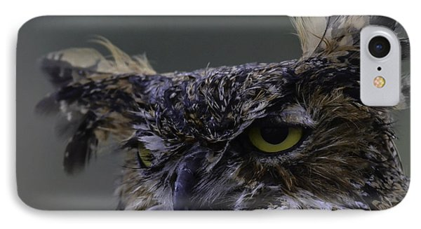 Owl Of Rist IPhone Case