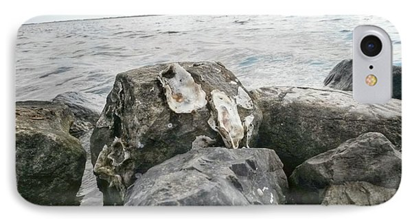 Oysters On The Rocks IPhone Case