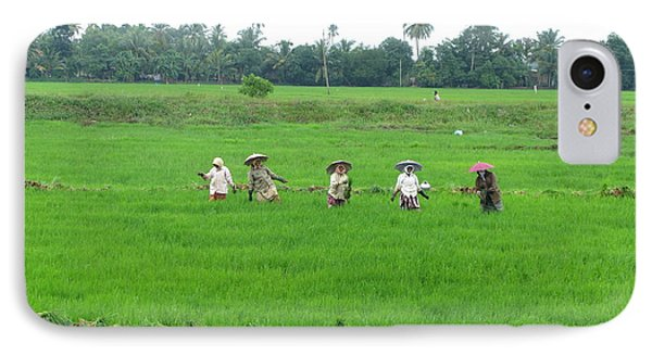 Paddy Field Workers IPhone Case