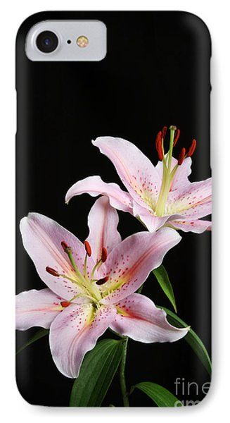 Pale Pink Asiatic Lilies IPhone Case