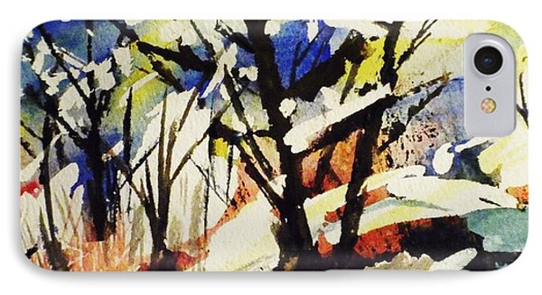 Palenville Winter Abstract - Catskills IPhone Case