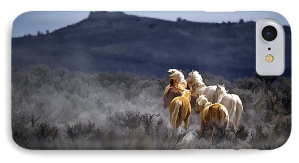 Palomino Buttes Band IPhone Case