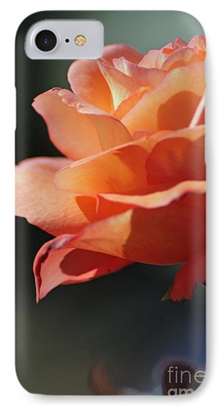 Partial Rose IPhone Case