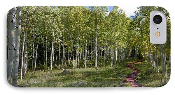 Path Through The Aspens In Colorado IPhone Case