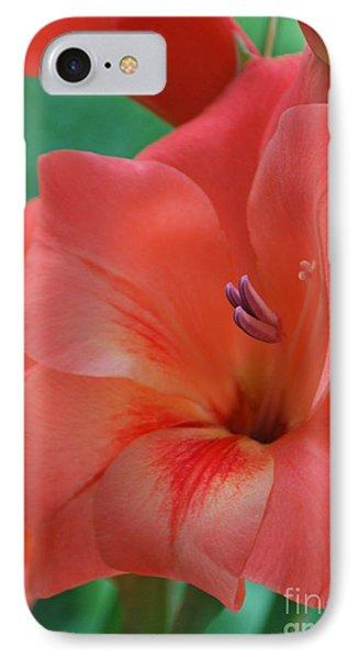 Peach Glads 3 IPhone Case