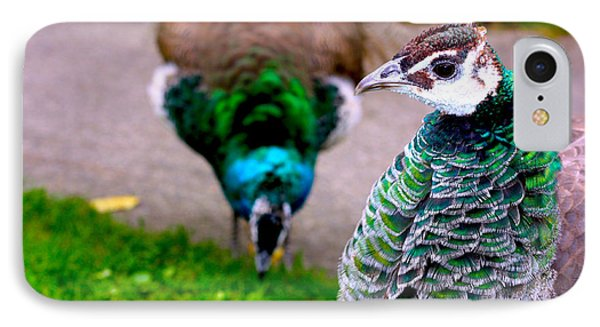 Peacock 4 IPhone Case