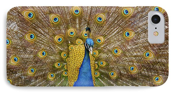 Peacock Courting IPhone Case