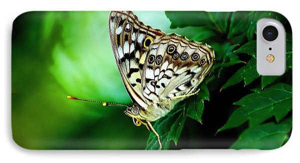 Pearly-eye Butterfly IPhone Case