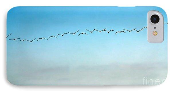 Pelican Flight Line IPhone Case