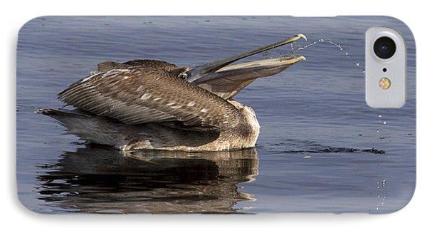 Pelican Fountain  IPhone Case