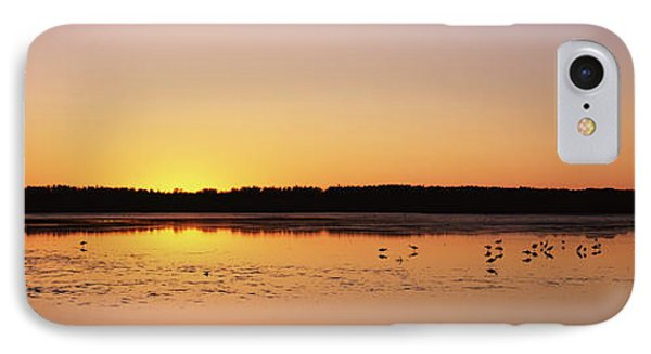 Pelicans And Other Wading Birds IPhone Case
